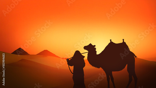 Staande foto Oranje eclat Camel and Bedouin in the wild landscape of the pyramids of Africa