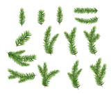 Collection Set of Realistic Fir Branches for Christmas Tree, Pine. Vector Illustration - 183995402