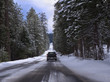 Driving in snowy forest