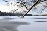 Winter landscape scenery in Finland. A tree branch in front. - 184040885