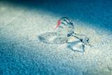 Champagne glass with lipstick print fallen on white carpet. - 184048874