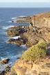 Côte sauvage du nord de l'île de Ténérife, archipel des Canaries