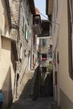 Liguria - 184082871