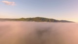 AERIAL: Beautiful mountain landscape with dense fog, during sunrise. Summer nature scenery with green meadows and trees and mountain chain on a background. - 184087002