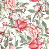 Seamless pattern with roses. Hand draw watercolor illustration - 184094858