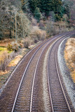 Train tracks in Cornwall england UK near bodmin - 184095662
