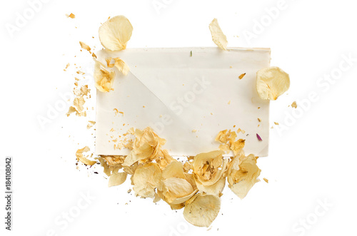 dried flowers lying on a white sheet of paper