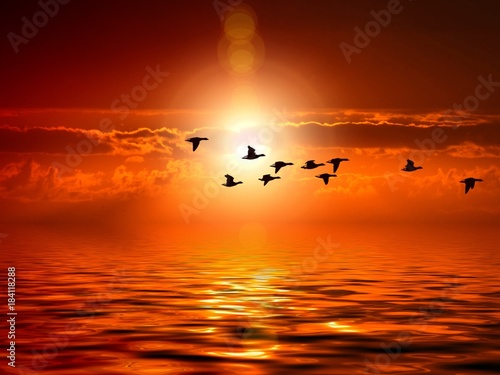Plexiglas Zonsopgang sunset / sunrise nature landscape