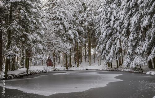 Plexiglas Zwart étang gelé des Vosges