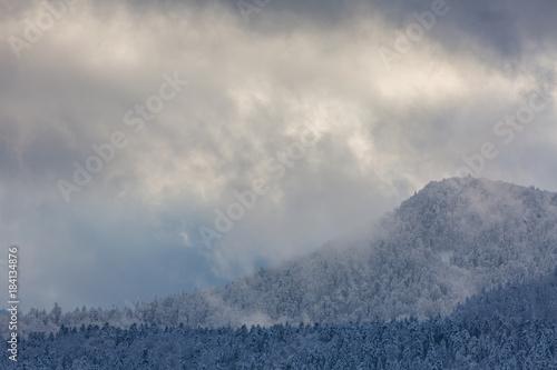 Foto op Canvas Donkergrijs Montagne des Vosges en hiver
