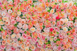 flower background. backdrop wedding decoration. Rose pattern. Wall flower - 184140063