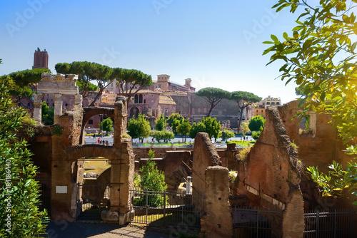 Tuinposter Rome Roman forum, Italy