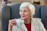 Portrait of elegant senior woman smiling looking away sitting in big comfortable chair with tea cup - 184196289