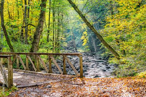 Plexiglas Bergrivier Picturesque old iron bridge over a forest stream