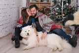 pretty young woman kisses her man against the backdrop of a Christmas tree. A young family and their dog celebrates New Year and Christmas. samoyed and his family