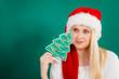 Woman in Santa hat holding little Christmas tree.