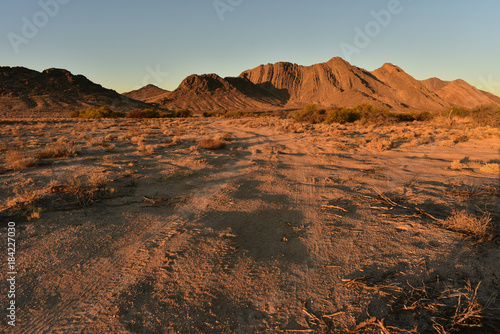 Canvas Diepbruine off road Mojave desert landscape in Pahrump, Nevada, USA