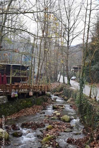 Foto op Canvas Grijs Landscape