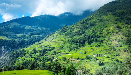 Deurstickers Rijstvelden Beautiful landscape with green field of rice and mountains in nepal