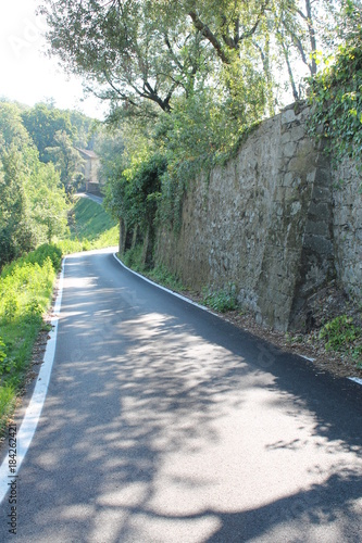 Fotobehang Toscane Shade-dappled country road Tuscany Italy