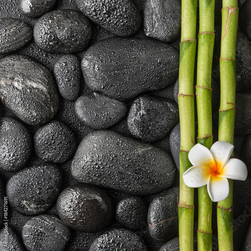 plumeria and bamboo grove on the black stones in water drops - 184271691