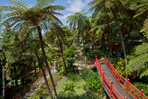 Foto op Canvas Zen Zen garden design - tropical garden - red bridge leads through garden - Botanischer Garten