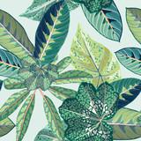 Tropical Jungle Leaf Botanical Seamless Vector Illustration - 184291249