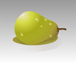 Vector illustration of a pear in a picturesque style on a light gray background - 184296463
