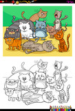 cats and kittens characters group color book - 184297064