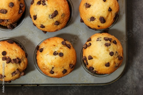 Sticker Overhead view of Chocolate Chip muffins in a baking pan