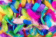 Background texture of brightly colored feathers