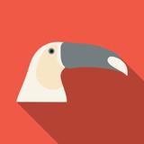 brazilian toucan bird nature - 184359831