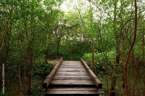 Naklejka Most drewna w lesie