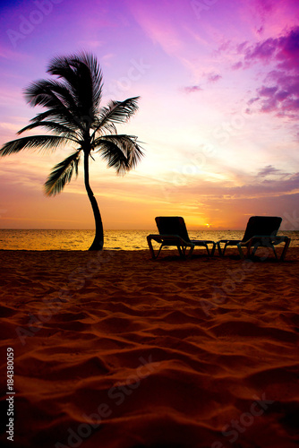 Tuinposter Bruin Beautiful sunrise on the ocean coast, palm tree and sun loungers.