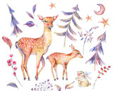 Watercolor card with cute deer and fawn - 184407037