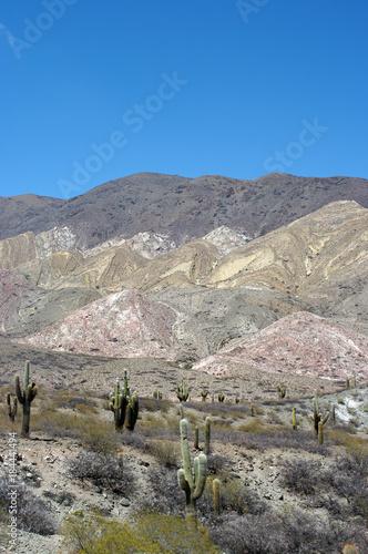Foto op Canvas Donkergrijs Panorama d'Argentine