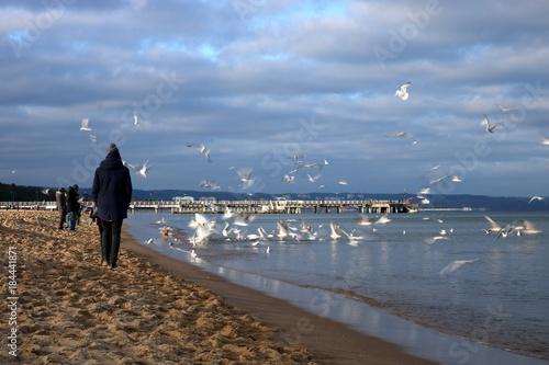 Ludzie ubrani w ciepłe kurtki w chłodny słoneczny dzień spacerują po nadmorskiej plaży, na wodzie i nad nią dużo mew i rybitw, na niebie niskie jesienne chmury