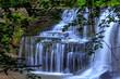 Summer Waterfall - 184447892