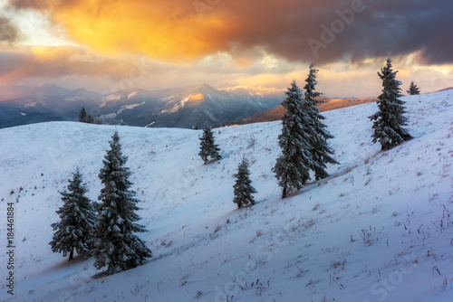 Fotobehang Winter Fantastic orange winter landscape in snowy mountains glowing by sunlight. Dramatic wintry scene with snowy trees. Christmas holiday concept. Carpathians mountain, Ukraine, Europe