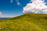 green grass on hillside meadow in high mountains under the cloudy blue sky