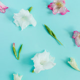 Beautiful pink gladiolus flower buds on pastel blue background. Flat lay, top view. - 184472446