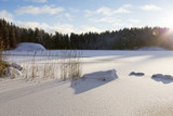 Winter landscape in Finland. Snowy ground and lake ice with sunlight. Beautiful moment on a cold morning. - 184478056