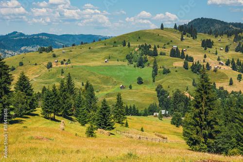 Deurstickers Honing Landscape of Apuseni Mountains in Romania, Europe