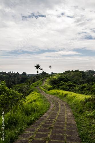 Foto op Plexiglas Bali BALI WALK