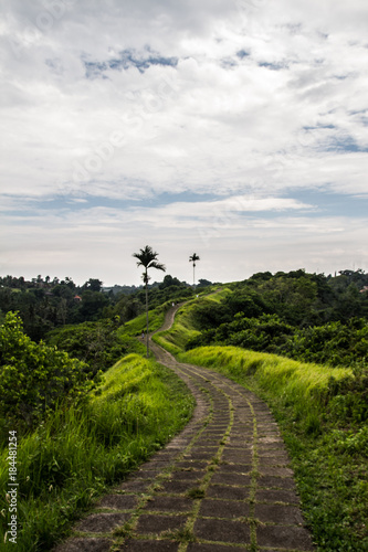 Fotobehang Bali BALI WALK