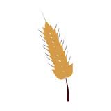Harvest of wheat symbol icon vector illustration graphic design - 184484886