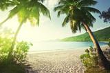 sunset on the beach Takamaka, Mahe island, Seychelles - 184490861