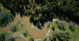 Drone flying over wild forest dirty winding river. Aerial 4K flyover shot of nature. Ecology environmental problems. - 184505095