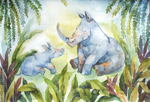 sliczny-maly-nosorozec-z-jego-mama-odizolowywajaca-na-bialym-tle