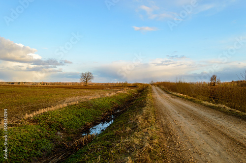 Foto op Canvas Pool empty road in the countryside in summer. gravel surface